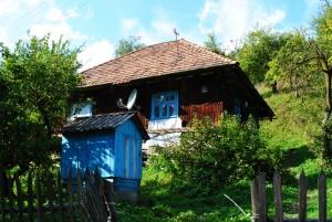 pac-ukraine-2012-242